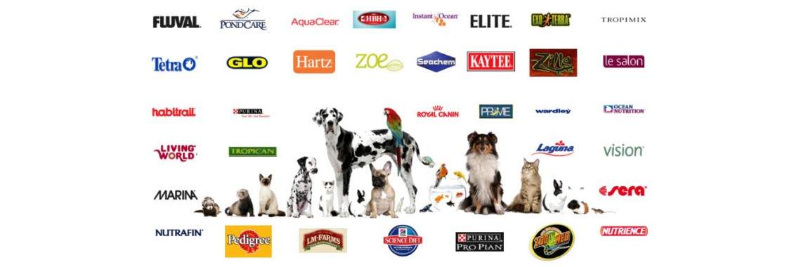 Pet Products and Supplies image.